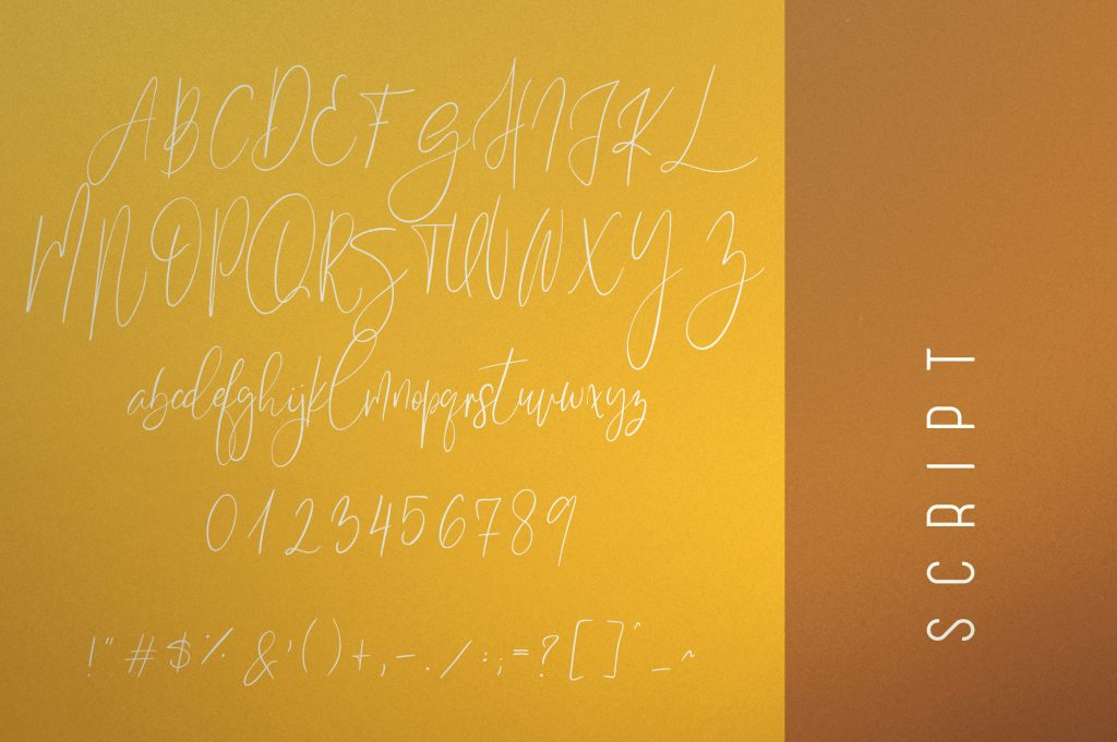 Sunflower Font Duo - Just now $19 - 10