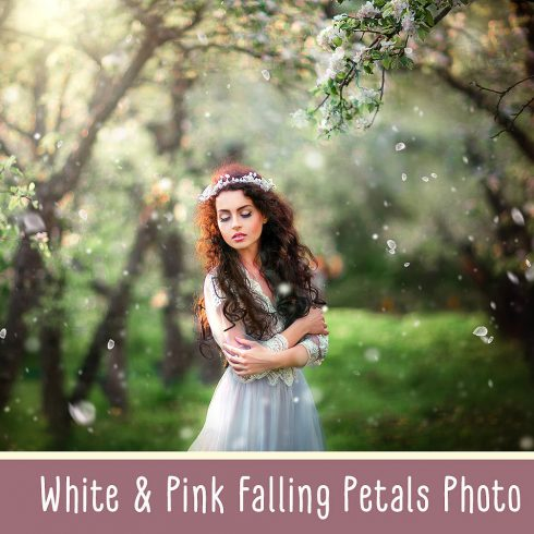 White and Pink Petals Photo Overlays - $8 - 600 490x490
