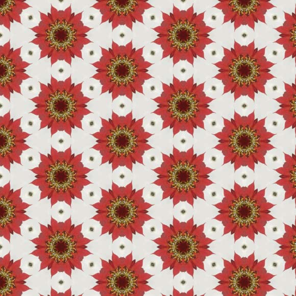 5 Free Floral Patterns from WowPatterns - Red sunflowers seamless pattern. White floral background texture 580 X 580