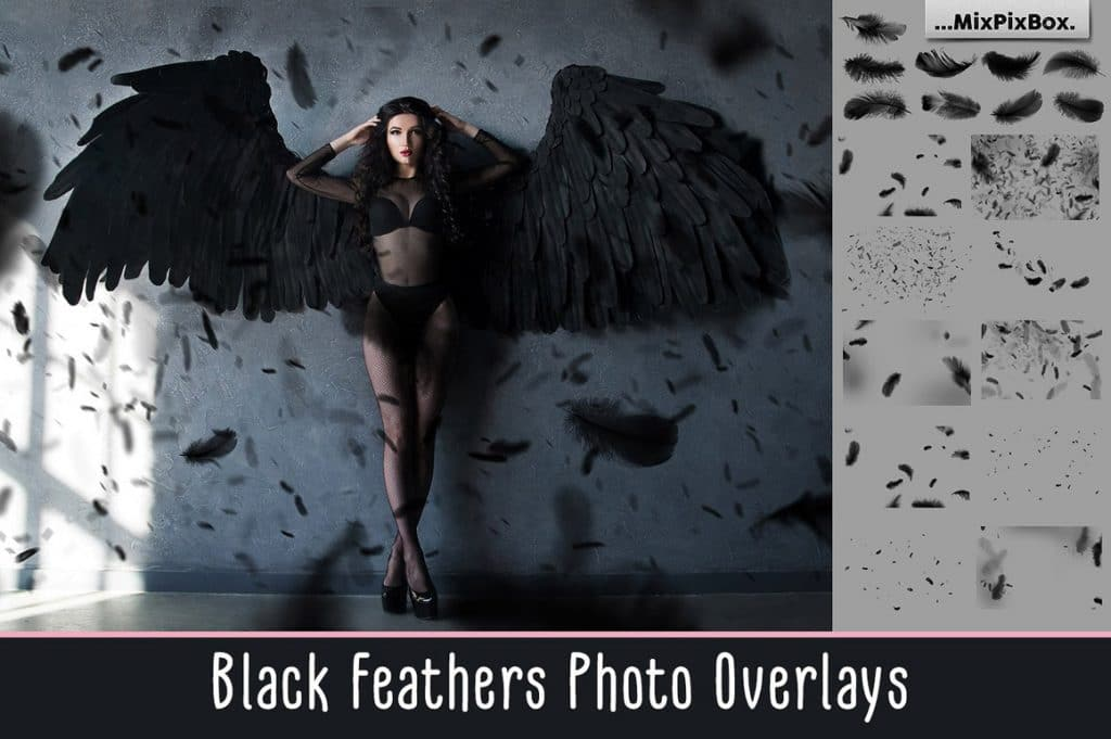 Huge Photo Editing Bundle - black feathers first image