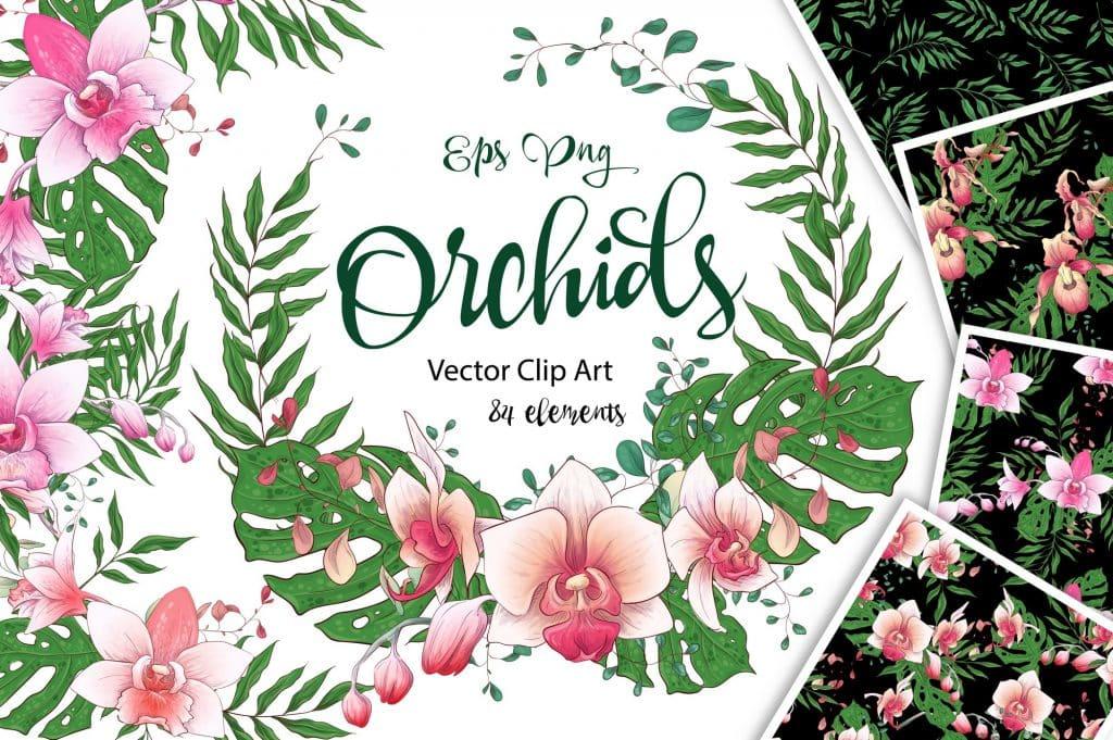 Orchids Vector Clip Art - $14 - 1 13
