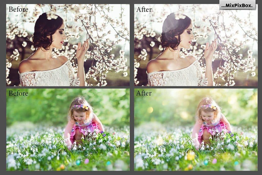 Spring Sunbeams Photo Overlays - $8 - 1 7