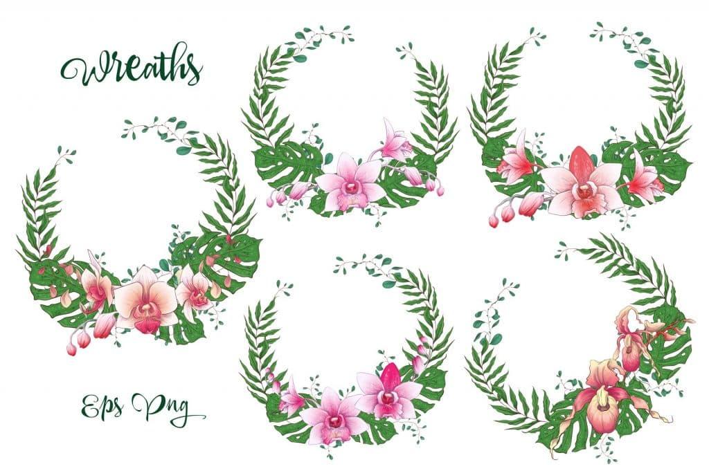 Orchids Vector Clip Art - $14 - 2 13