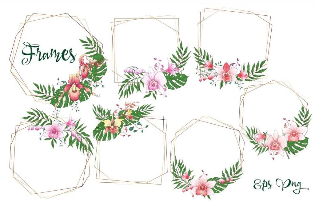 Orchids Vector Clip Art - $14 - 4 11