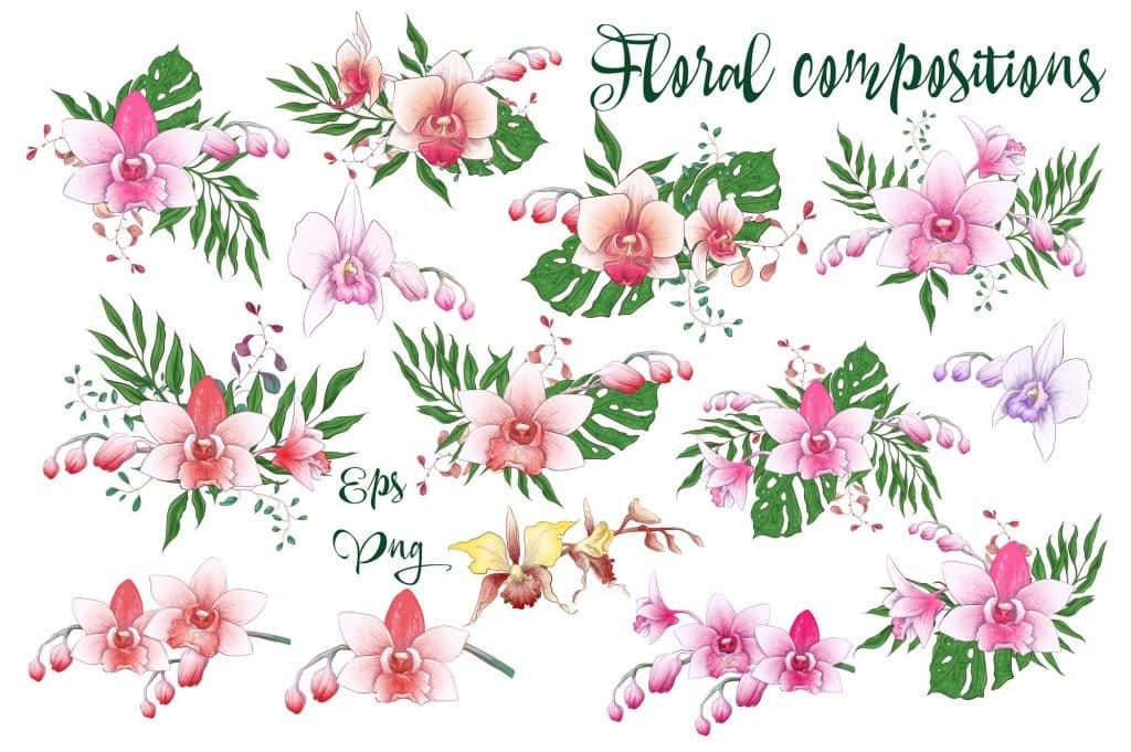 Orchids Vector Clip Art - $14 - 5 10