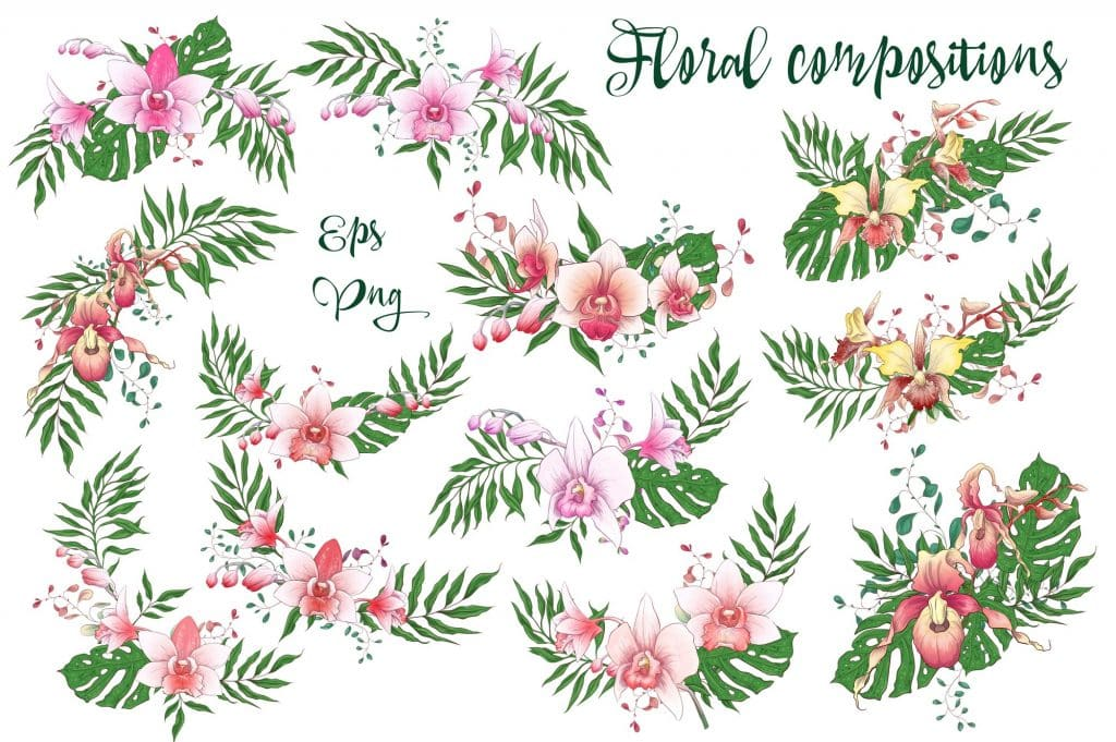 Orchids Vector Clip Art - $14 - 6 9