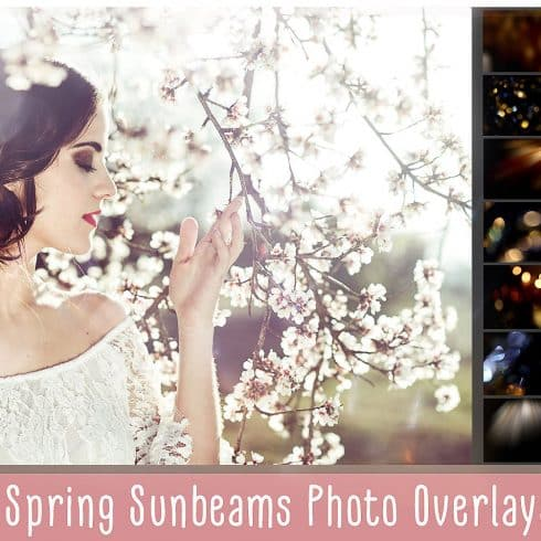 Spring Sunbeams Photo Overlays - $8 - 690 3 490x490