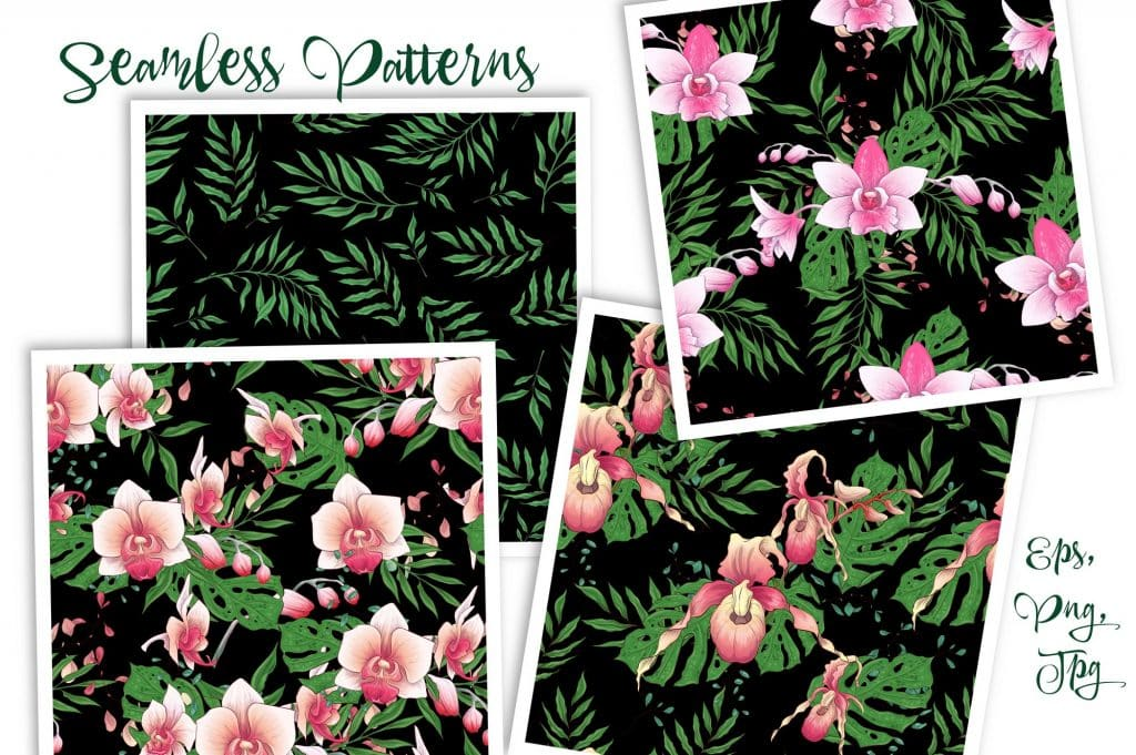 Orchids Vector Clip Art - $14 - 9 8