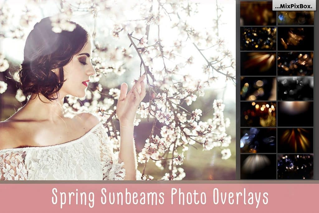 Spring Sunbeams Photo Overlays - $8 - cover