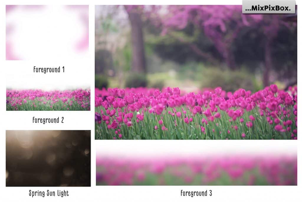 Spring Tulips Backdrop Photoshop Add-Ons - $9 - 1 9