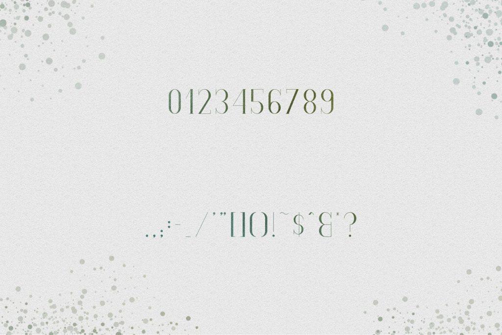 Spring Font with 30% OFF - SpringVibe Serif Font - 11