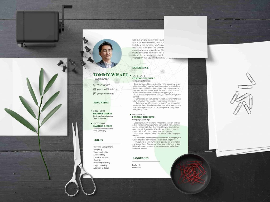 Resume Bundle: 2 Templates in 5 color Schemes - 5 min