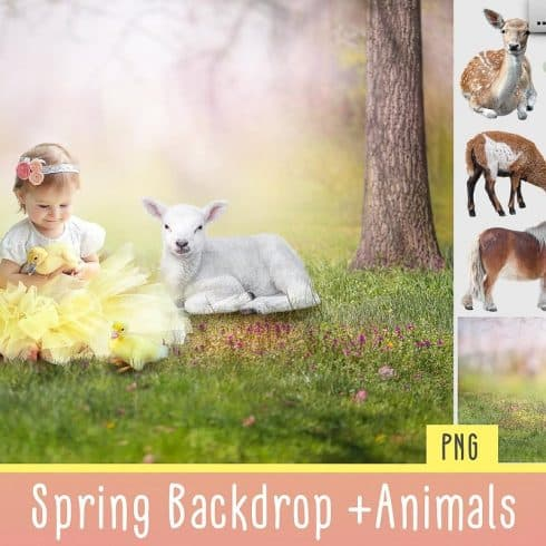 Spring Easter Animals & Background - $9 - 600 18 490x490
