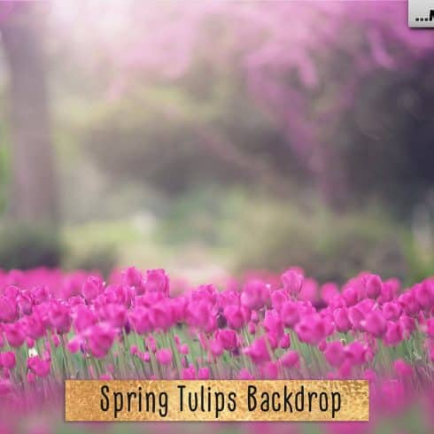 Spring Tulips Backdrop Photoshop Add-Ons - $9 - 601 3 490x490