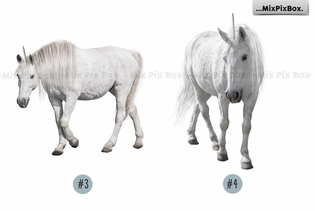 20 Unicorn Overlays Pack & Backdrops | PNG - 7 4