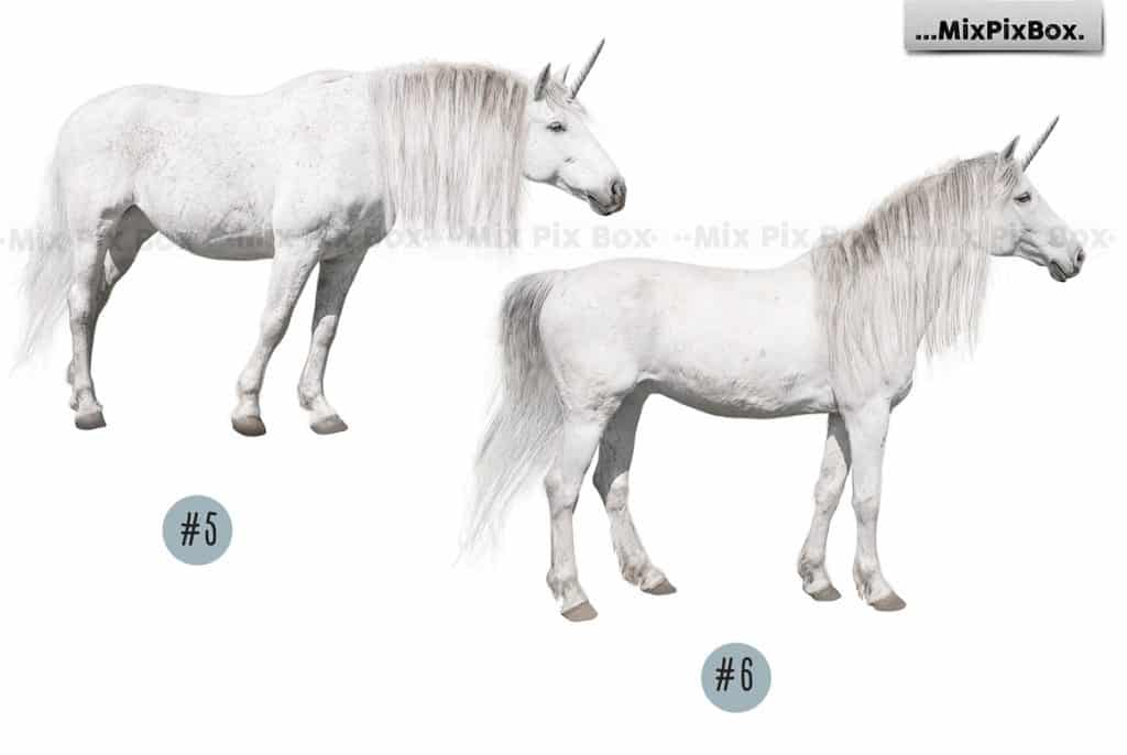 20 Unicorn Overlays Pack & Backdrops | PNG - 8 1