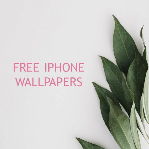 Free iPhone 11 Wallpaper: Flower Wallpapers Collection - 600 10 490x490