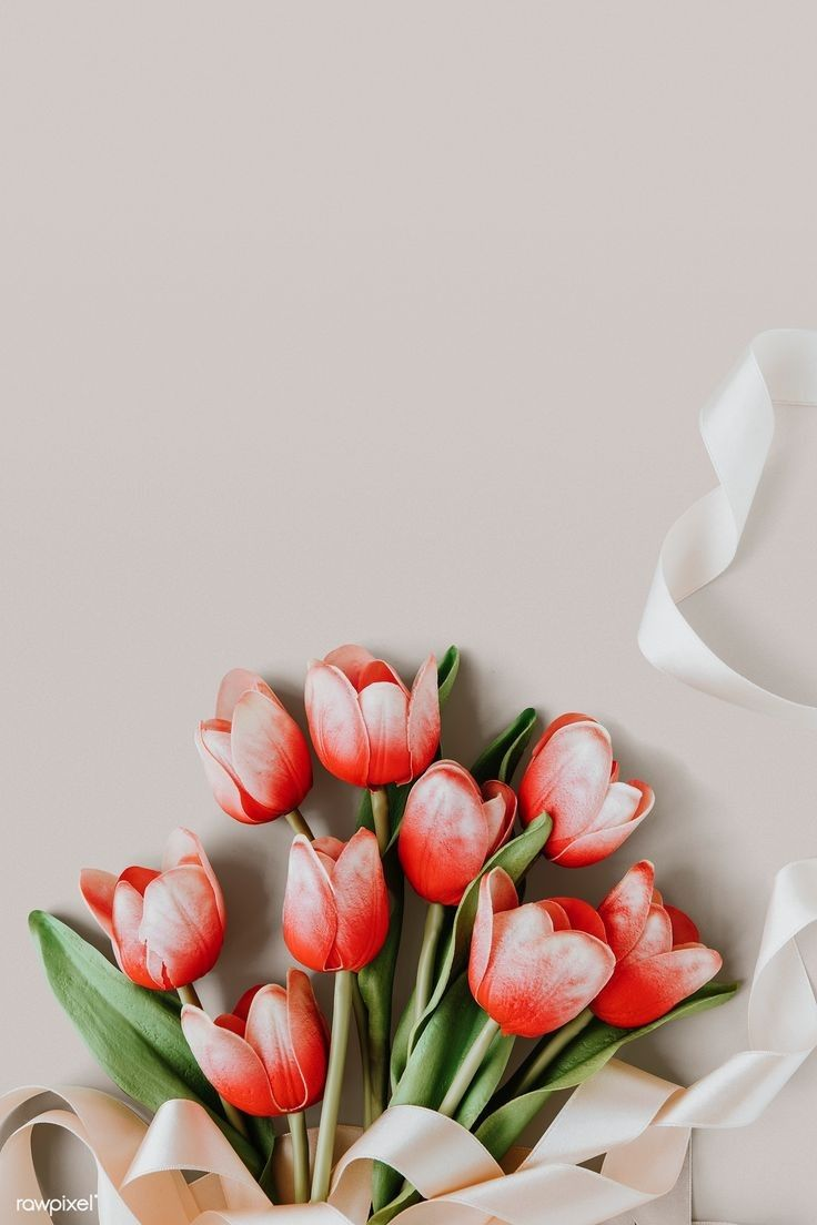 Free iPhone 11 Wallpaper: Flower Wallpapers Collection - IMG 6911