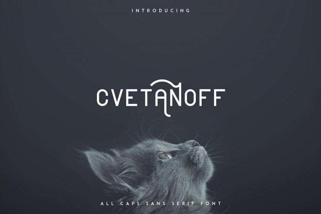 Rounded Sans Serif Font Cvetanoff -30% - 1 2 1