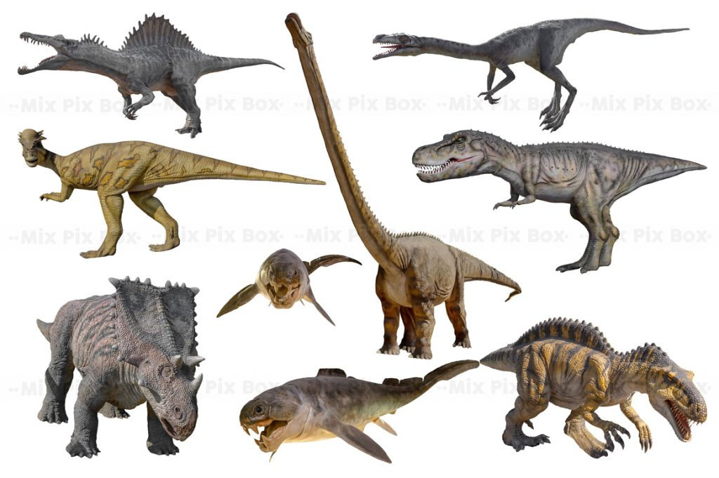Dinosaur Overlay Bundle: 34 PNG Photo Overlays 🐍 - 4 4
