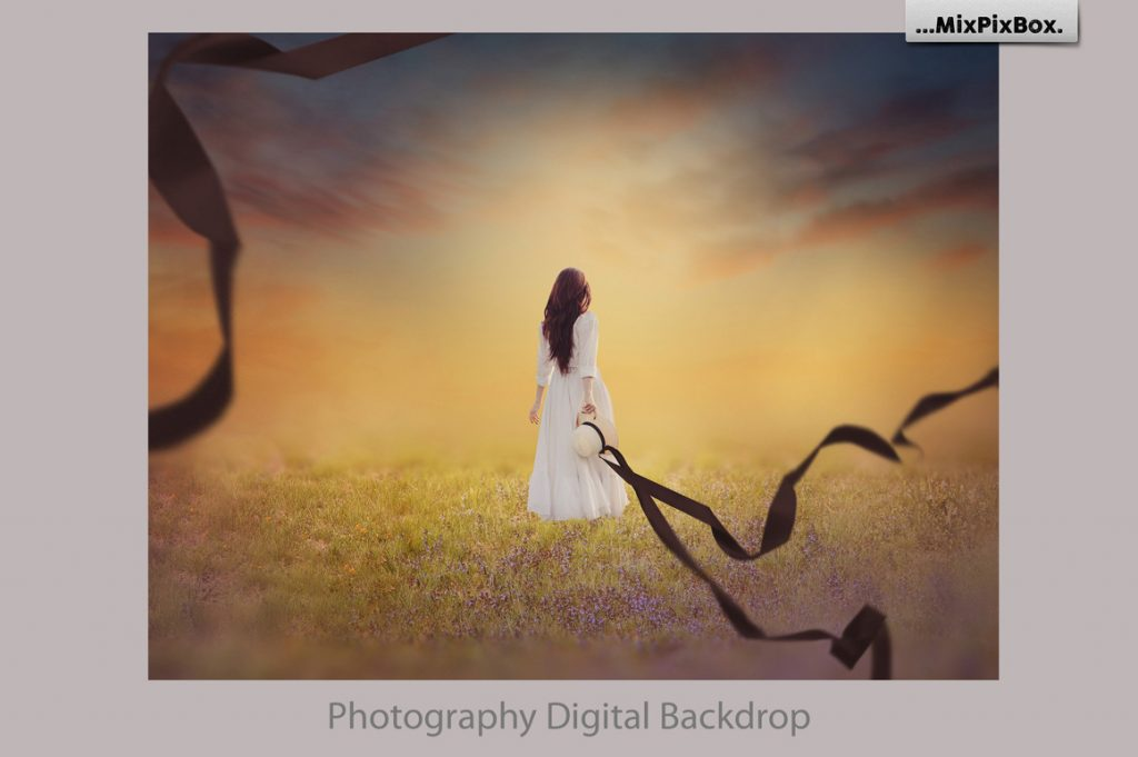 Summer Backdrops