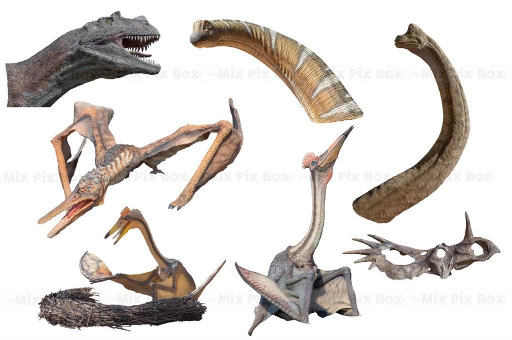 Dinosaur Overlay Bundle: 34 PNG Photo Overlays 🐍 - 5 1