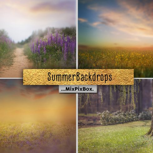 Summer Backdrops: Lovely Photography Collection - 600 25 490x490