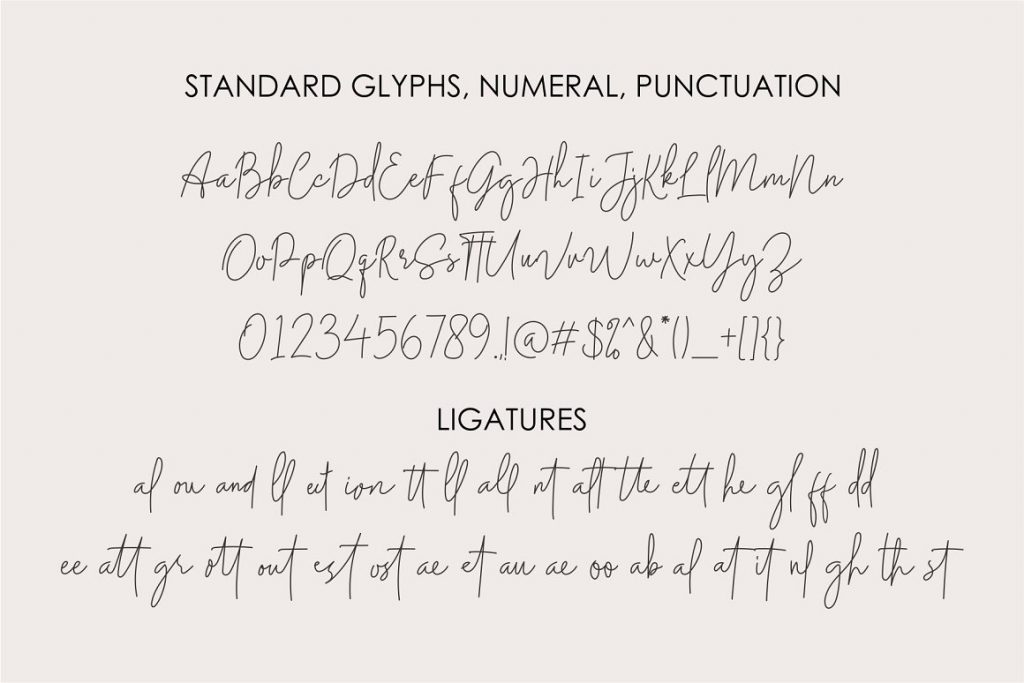 Midnight Signature Collection Font - 12