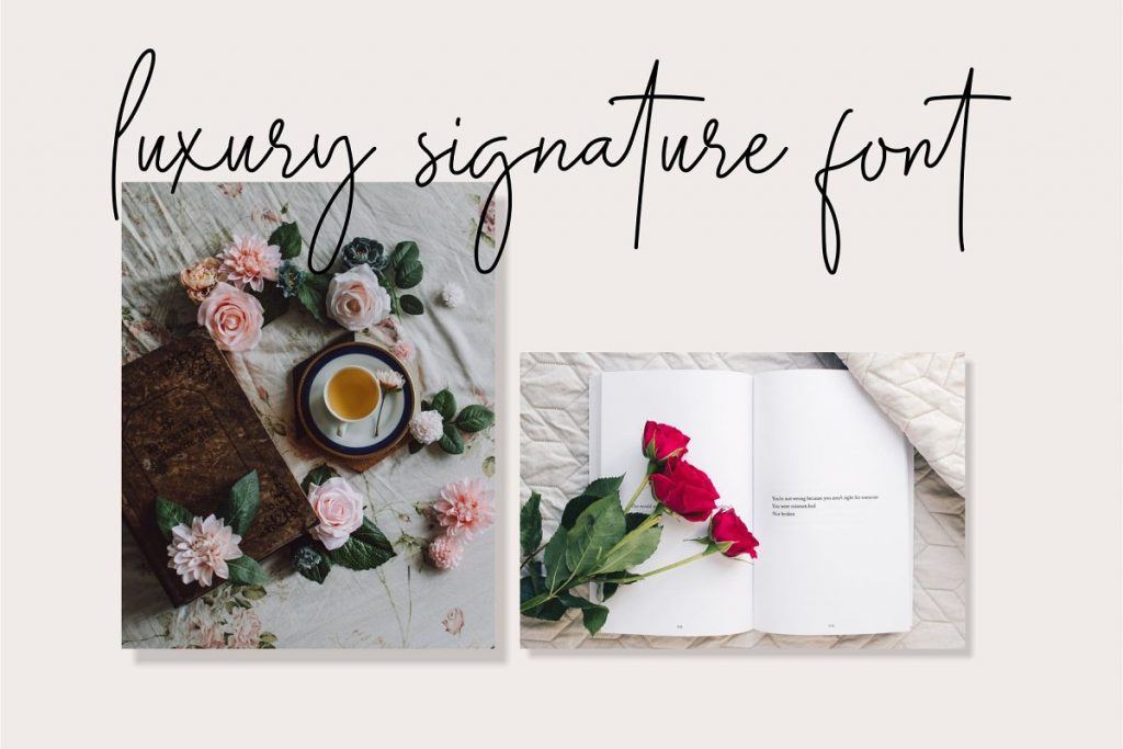 Midnight Signature Collection Font - 2