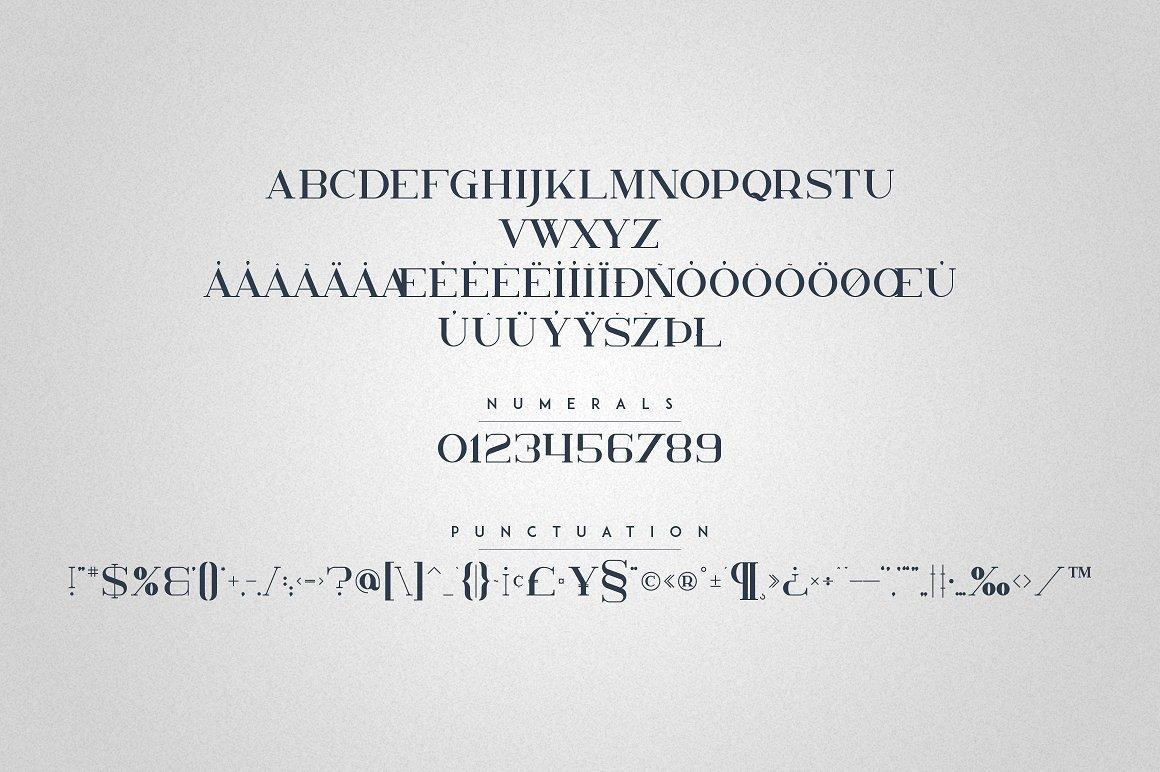 Kavo Family - 17 Modern Regular Fonts + 24 logos - 21