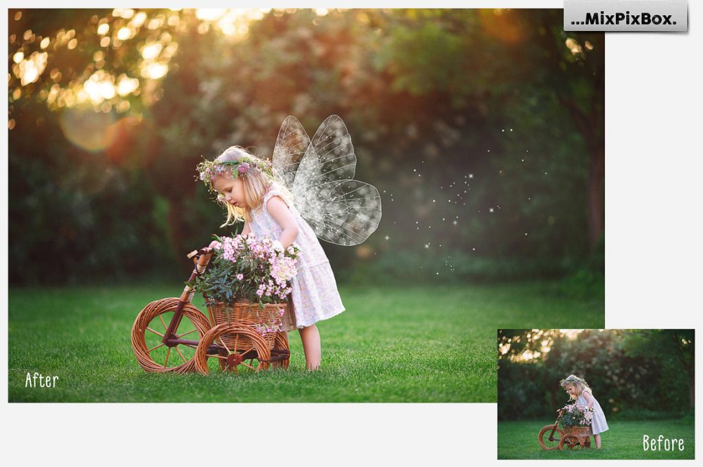 Fairy Wings PNG: 21 Fairy Wings Overlays - 3 3
