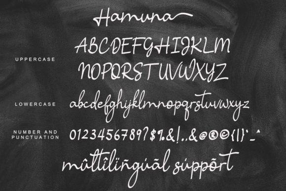 The 9 in 1 Best Seller Candy Script Font Bundle - Hamuna Fonts 9 580x387