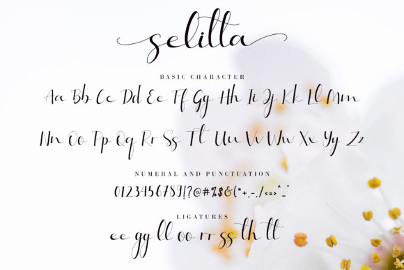 Selitta Skinny Handwritten Font - Selitta Fonts 3778184 10 580x387