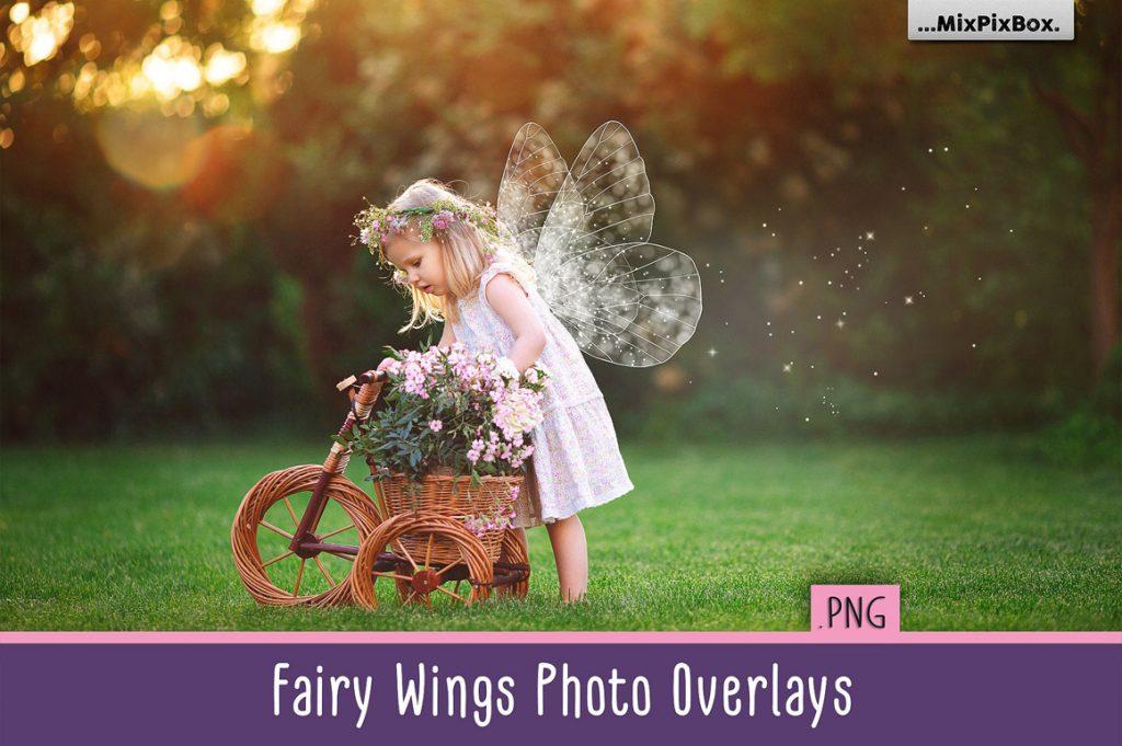 Fairy Wings PNG