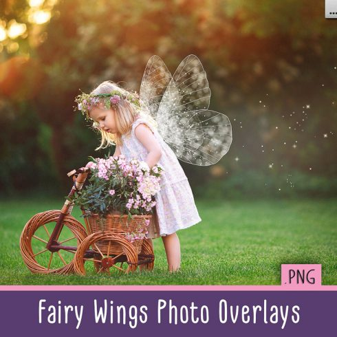Duotone Bundle: 88 Photoshop Actions - only $22 - fairy wings first image600 490x490