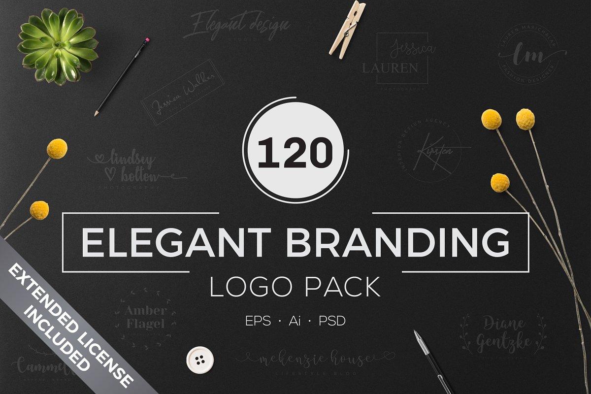 120 Elegant Logo Branding Pack - cover 1