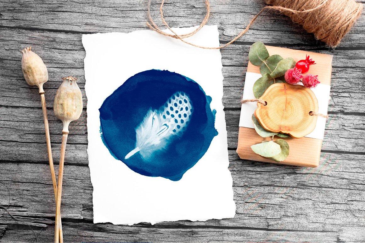 CYANOTYPE Digital Photoshop Effect - cyanotype photo template 9