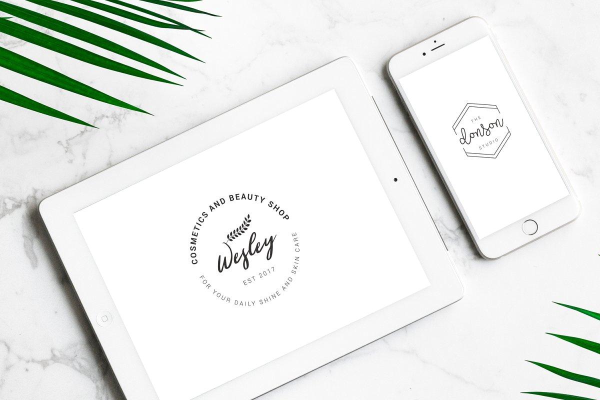 120 Elegant Logo Branding Pack - prev 02