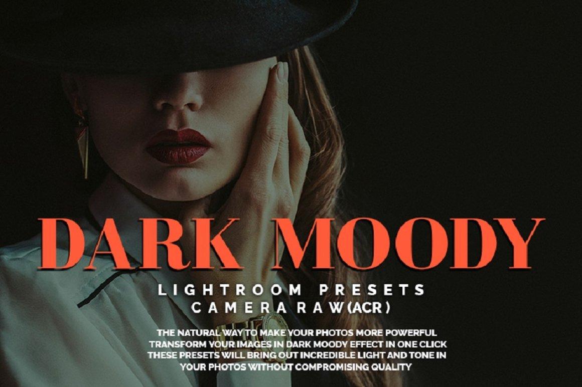 1200+ Mega Urban Lightroom Presets & Camera Raw - preview 1 3