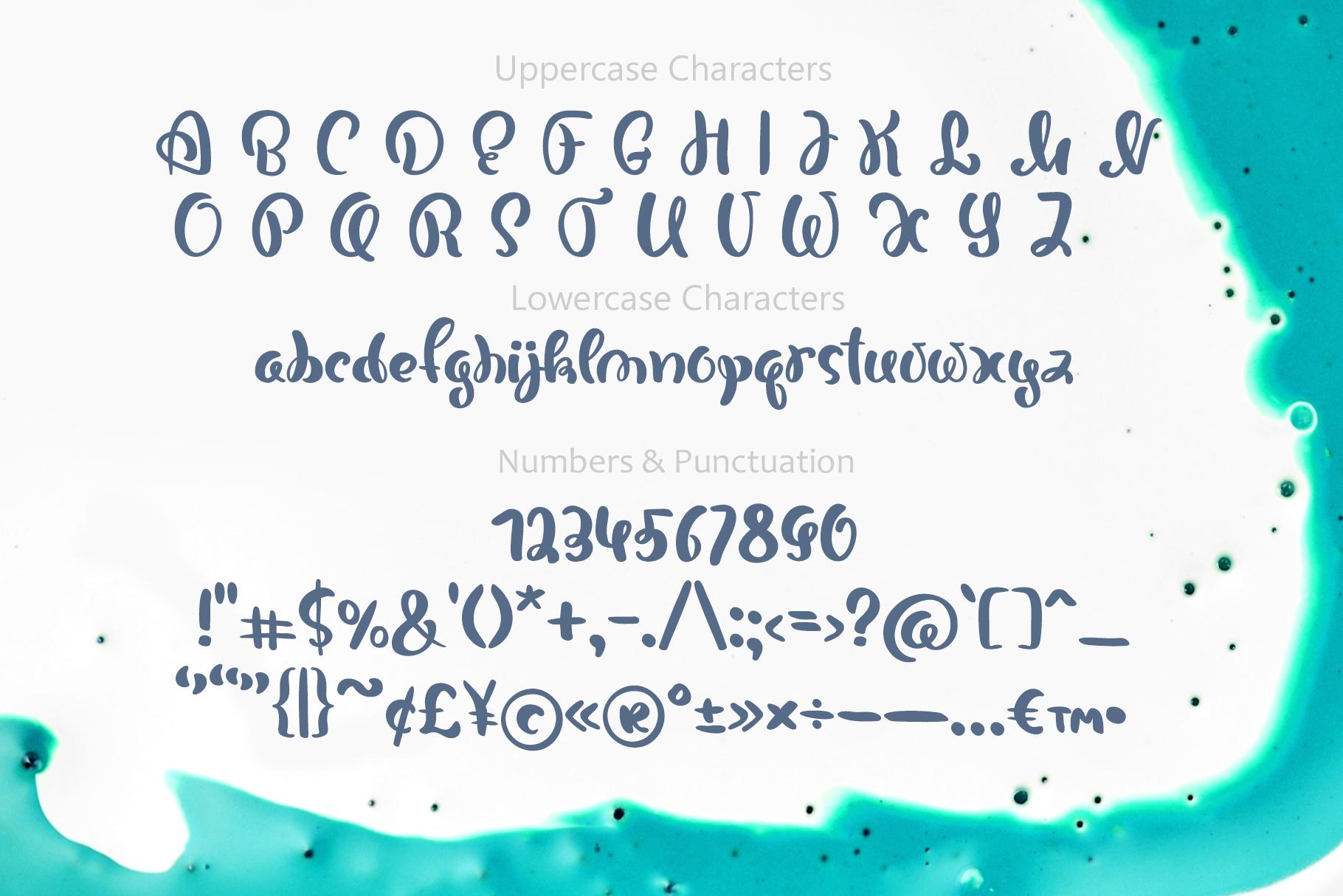 Bonjour Tall Handwritten Font 2020 - title05 4