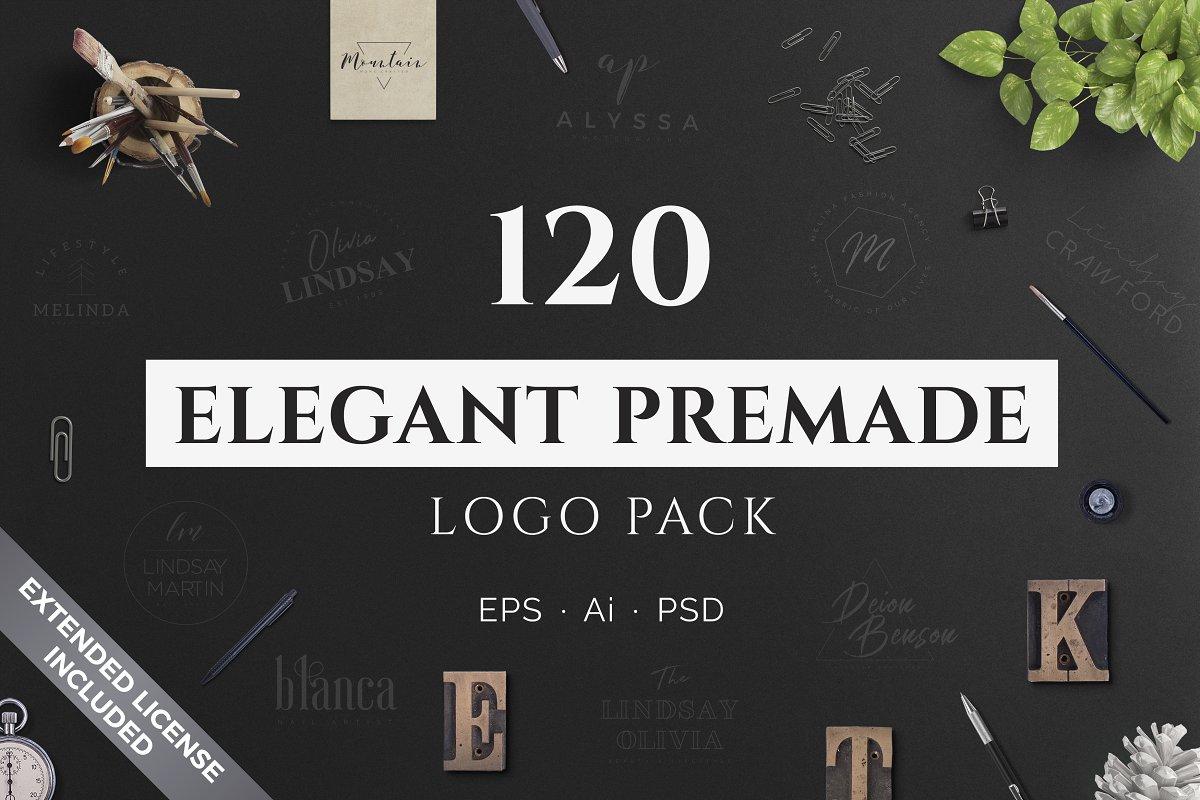120 Elegant Premade Logo Pack 2020 - cover main