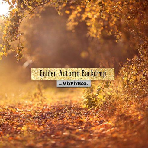Golden Autumn Backdrop - golden autumn backdrop first image600 490x490