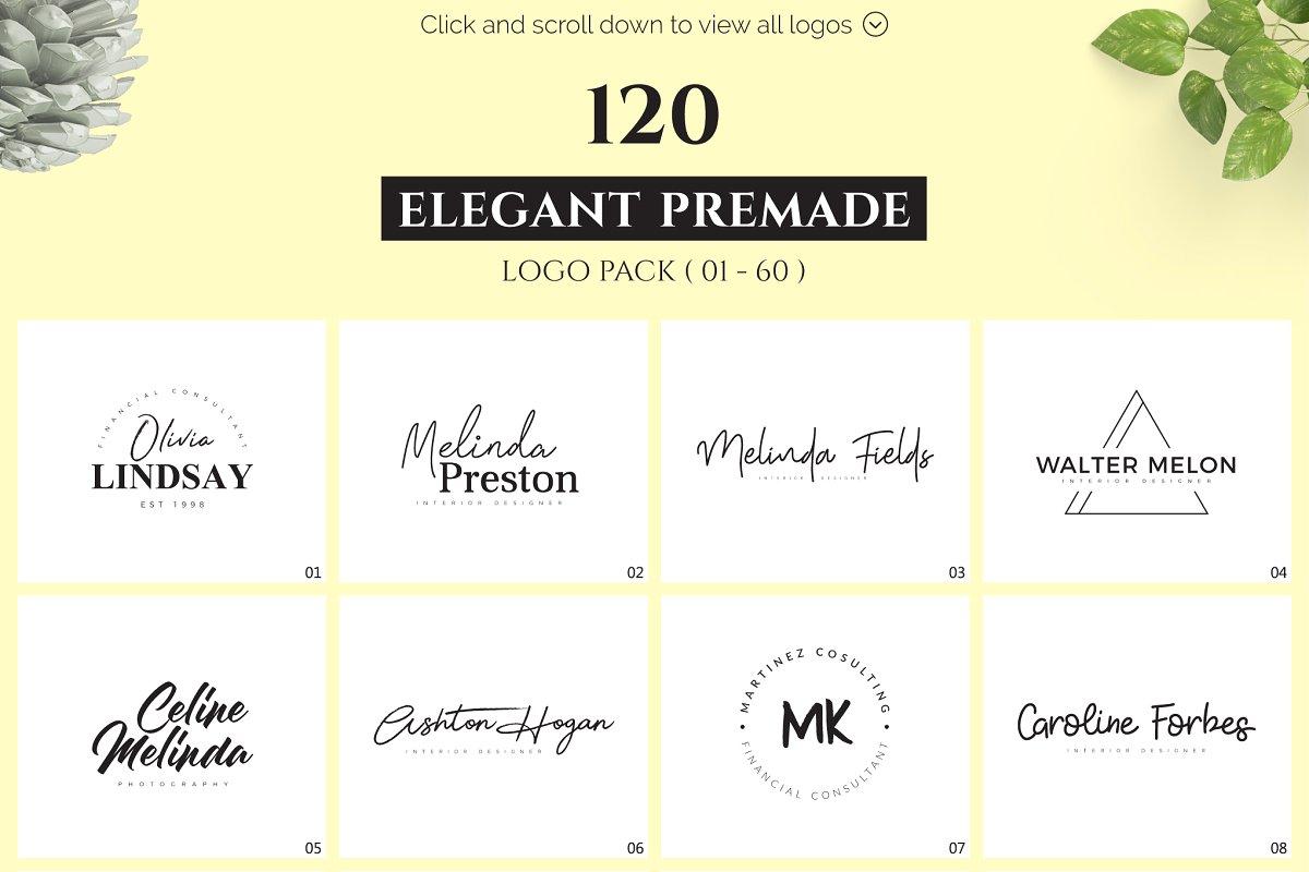 120 Elegant Premade Logo Pack 2020 - main prev 01