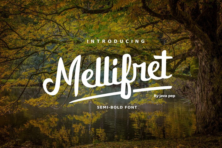Mellifret French Script Font - 1 .png
