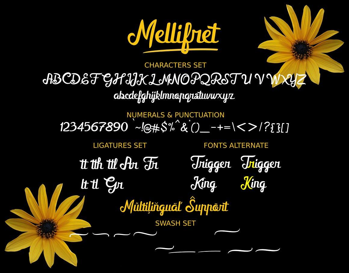 French Script Font