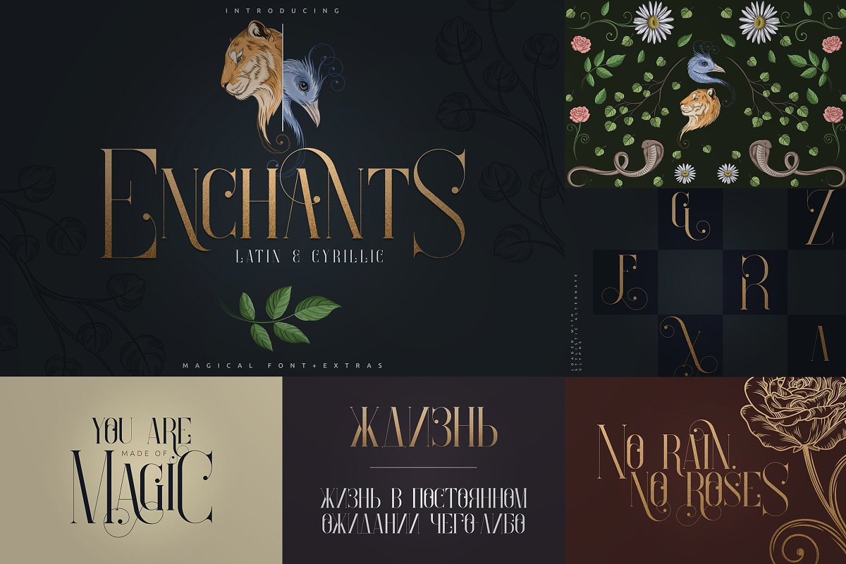 Bestseller Latin Font Collection Vol.02 - 2