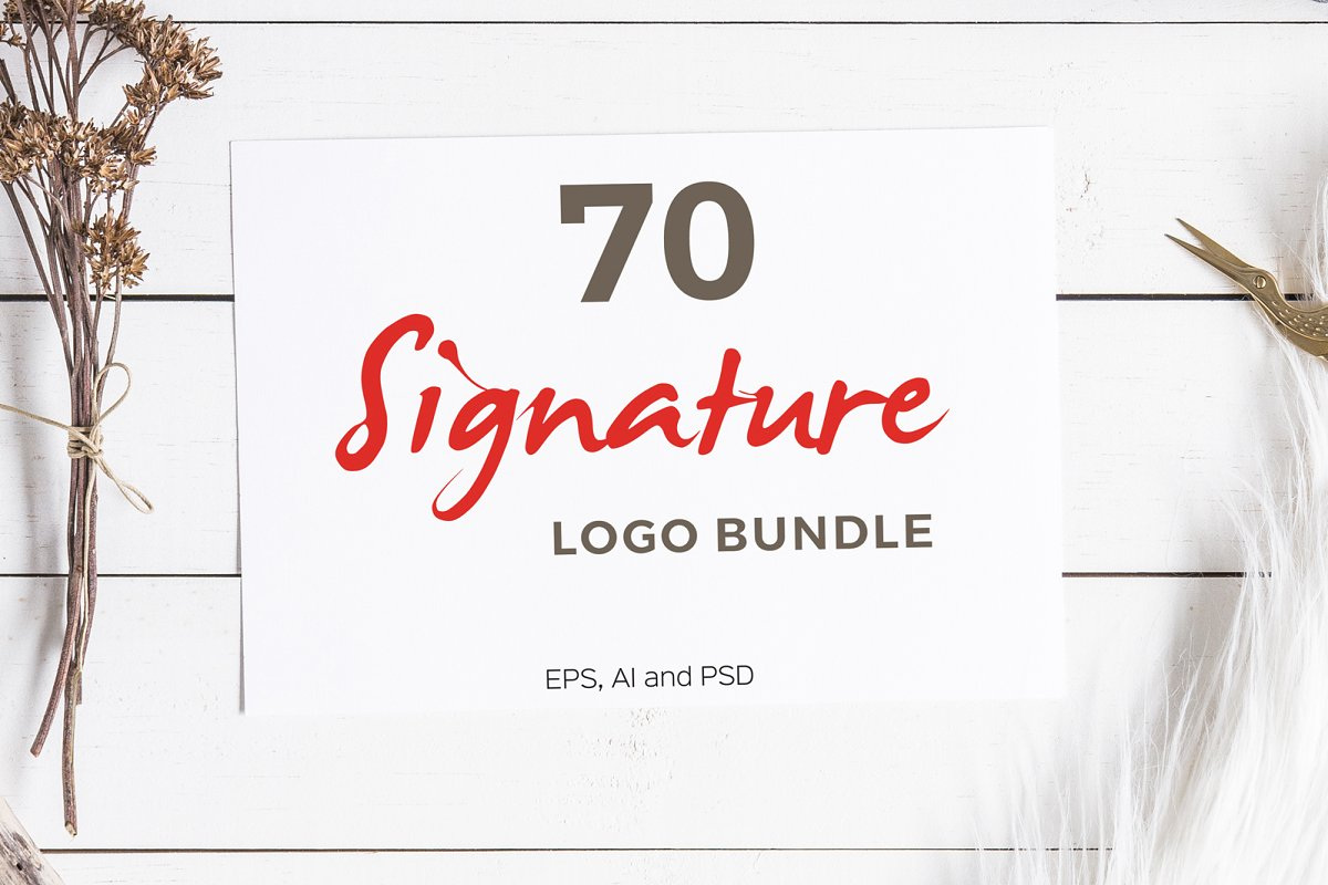 70 Signature Logo Bundle - cover mockup