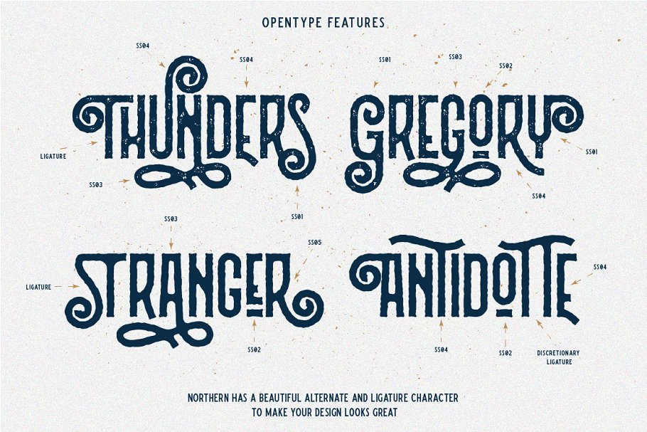 Northern Retro Future Font Bundle: 5 fonts with extras - 4 .png 1