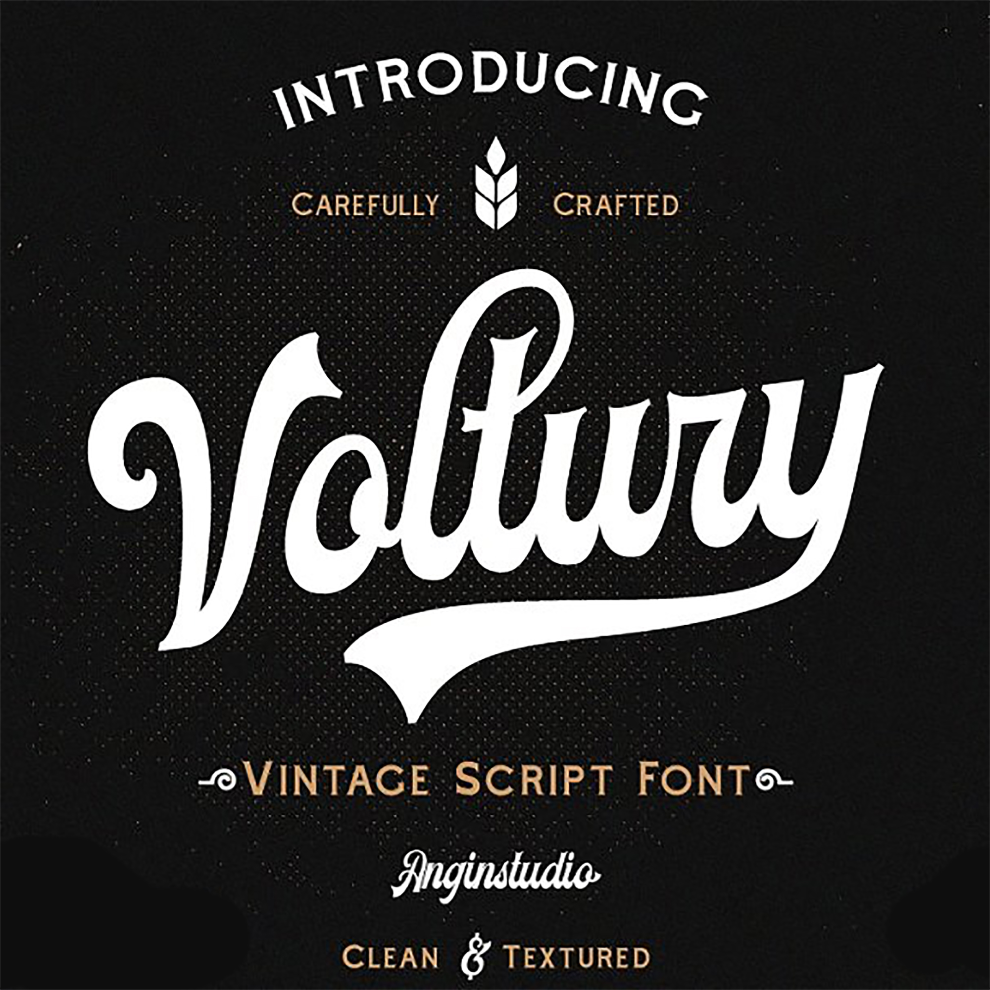 Vintage Monoline Font: Gillnord Script (4 Fonts with Extras ) + 24 Vintage Illustrations - AmericanVintageFont