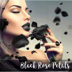 Black Rose Petals